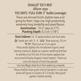 Seeds - Shallot, Ed's Red OG