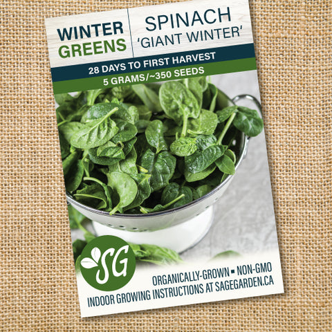 Organic Spinach, Giant Winter - 5g