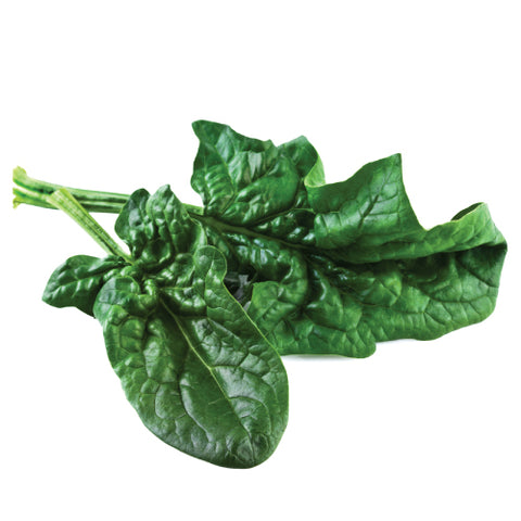 Seeds - Spinach, Bloomsdale Long Standing OG (SGH)