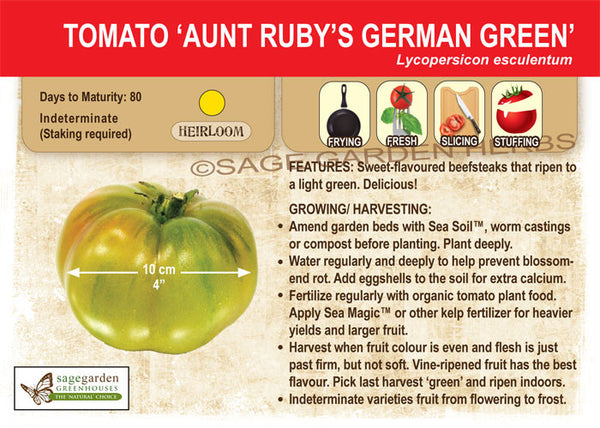 Tomato, Aunt Ruby's German Green (Live Plant)