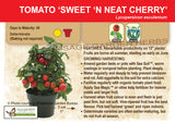 Tomato, Sweet 'N Neat Cherry (Live Plant)
