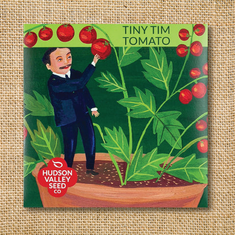 Seeds - Art Pack - Tomato, Tiny Tim (Organic)