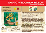 Tomato, Windowbox Yellow (Live Plant)