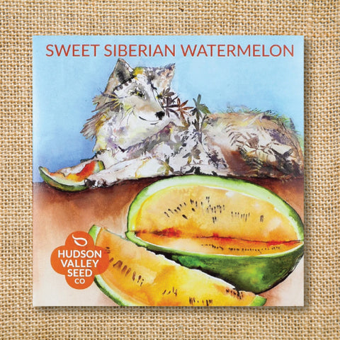 Seeds - Art Pack - Watermelon, Sweet Siberian OG