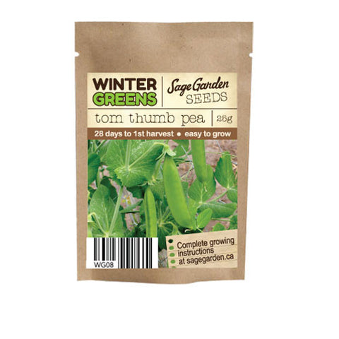 Tom Thumb Dwarf Snap Pea - 25g