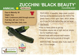 Zucchini 'Black Beauty' (Live Plant)