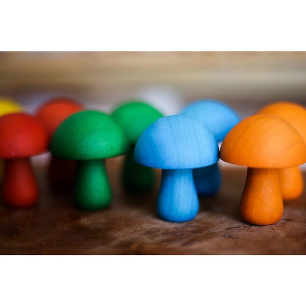 Coloured Mushroom Set of 10