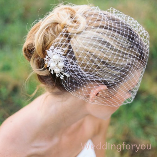 Bridal Birdcage Veil With Pearl Hair Comb