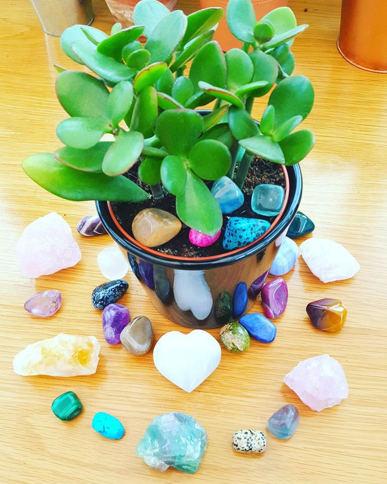 Crystals and Plants
