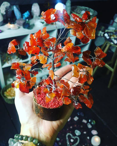 Carnelian Crystal Chip Tree 🍊🌳🔮💎