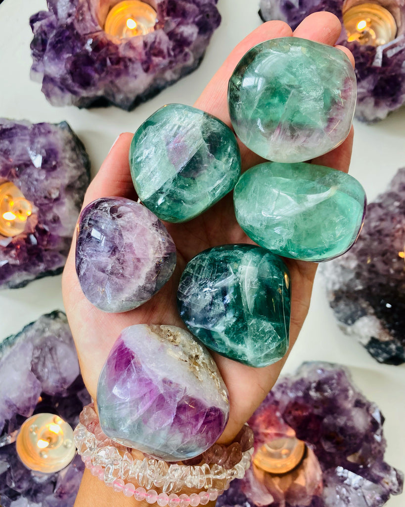 Beautiful Fluorite Top side Polish Tortoise Shells 🐢🔮💎💚✨