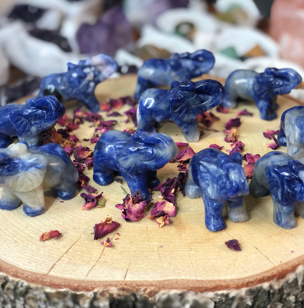 Sodalite Strength Elephants 🐘💎❤️💙