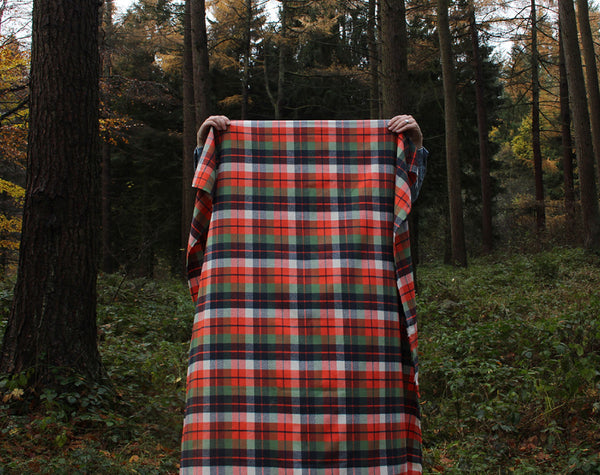 Adventure Mammoth Flannel by Robert Kaufman