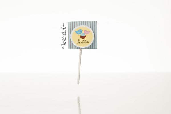 Happy Family Organic Lollipops