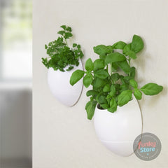 Eco Pod - Self Watering Herb Pot