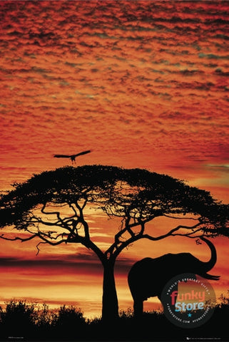 Africa Sunset Elephant Maxi Poster