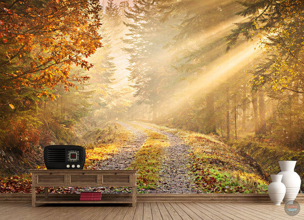AUTUMN FOREST WALLPAPER WALL MURAL