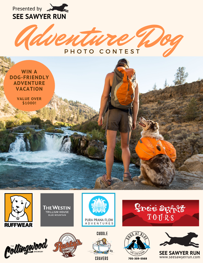 Adventure Dog Photo Contest