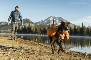 Ruffwear Approach Pack - Final Sale*