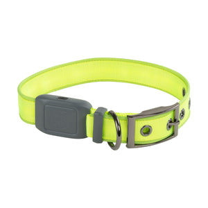 Nite Ize NiteDog Rechargeable LED Collar