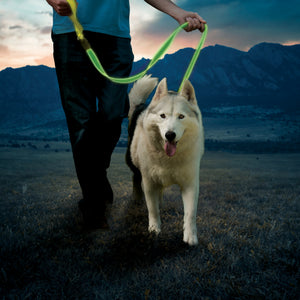 Nite Ize NiteDog Rechargeable LED Leash