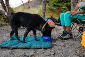 Ruffwear Quencher Bowl - Final Sale*