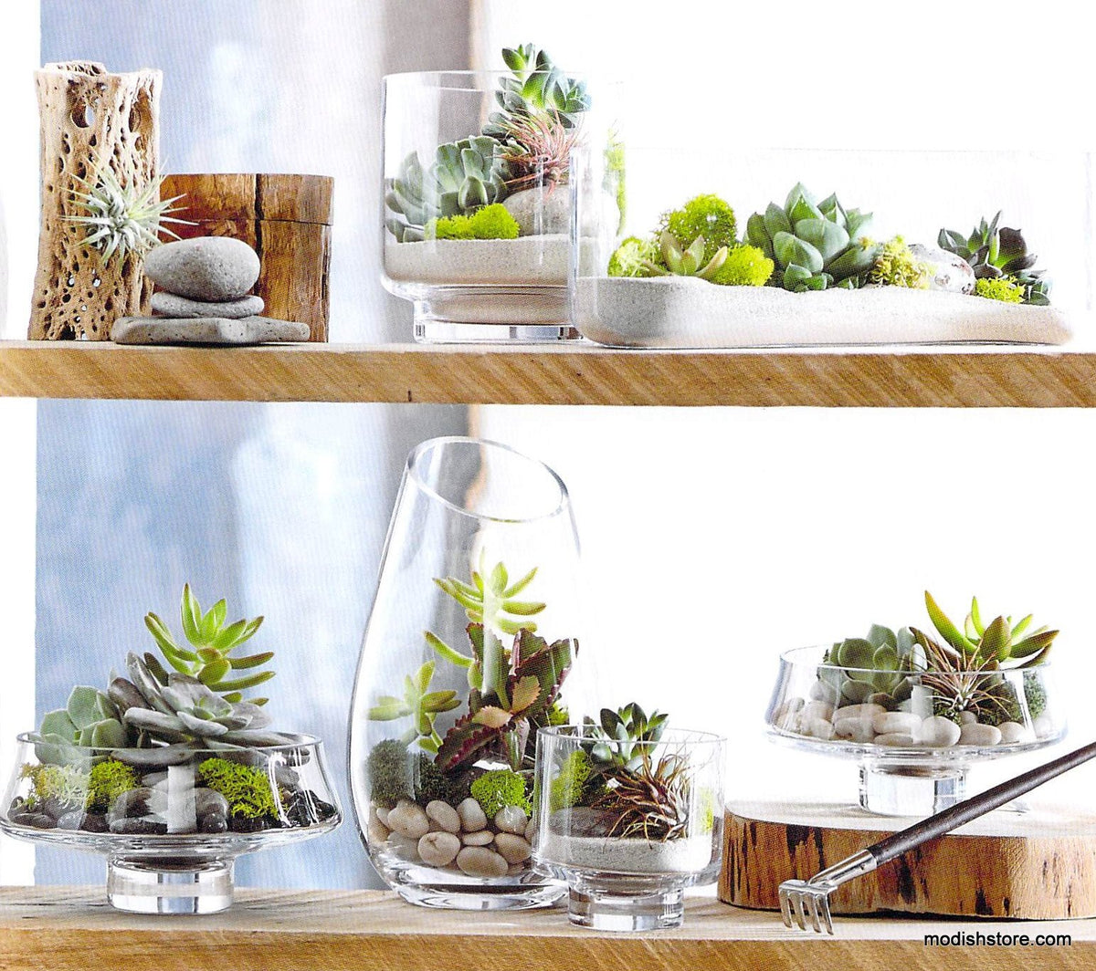 Roost Modern Glass Oval Long Terrarium
