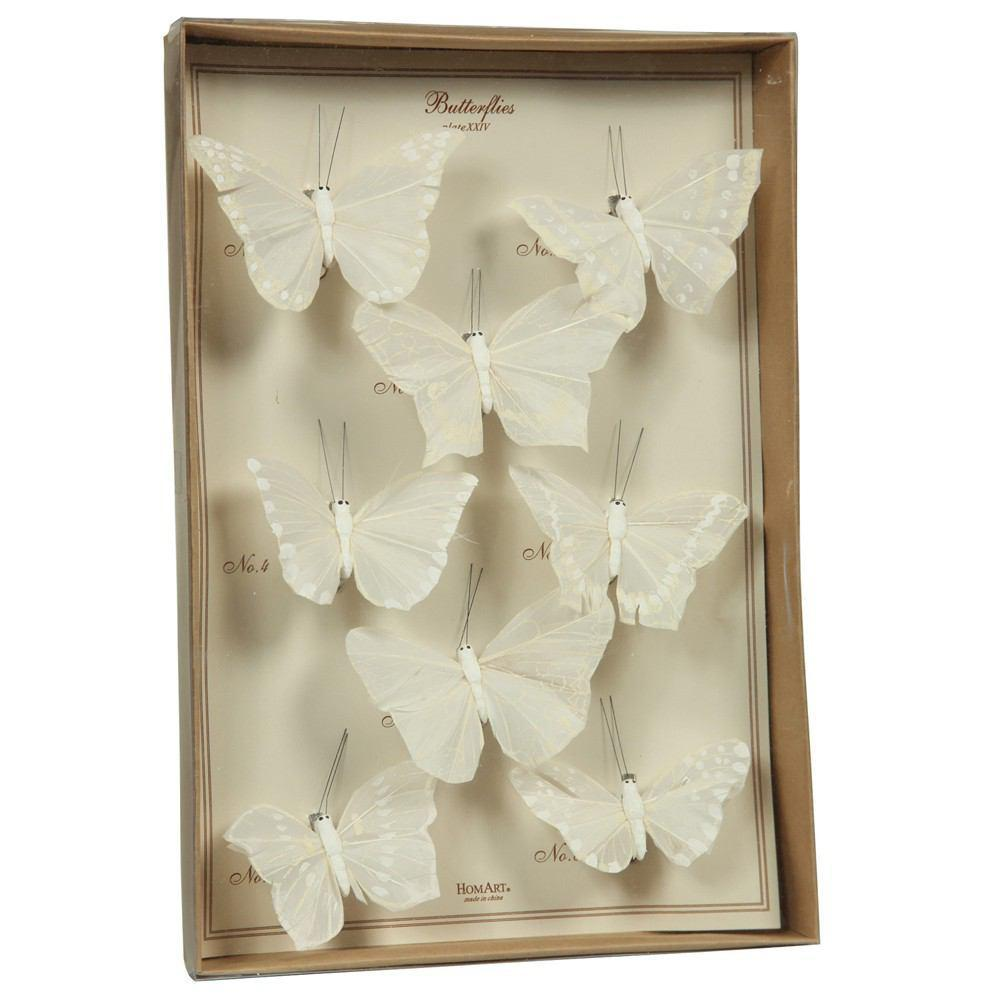 HomArt Butterfly Specimen Box - Set of 4 - Feature Image