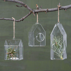 HomArt Glass House Terrarium - Set of 6