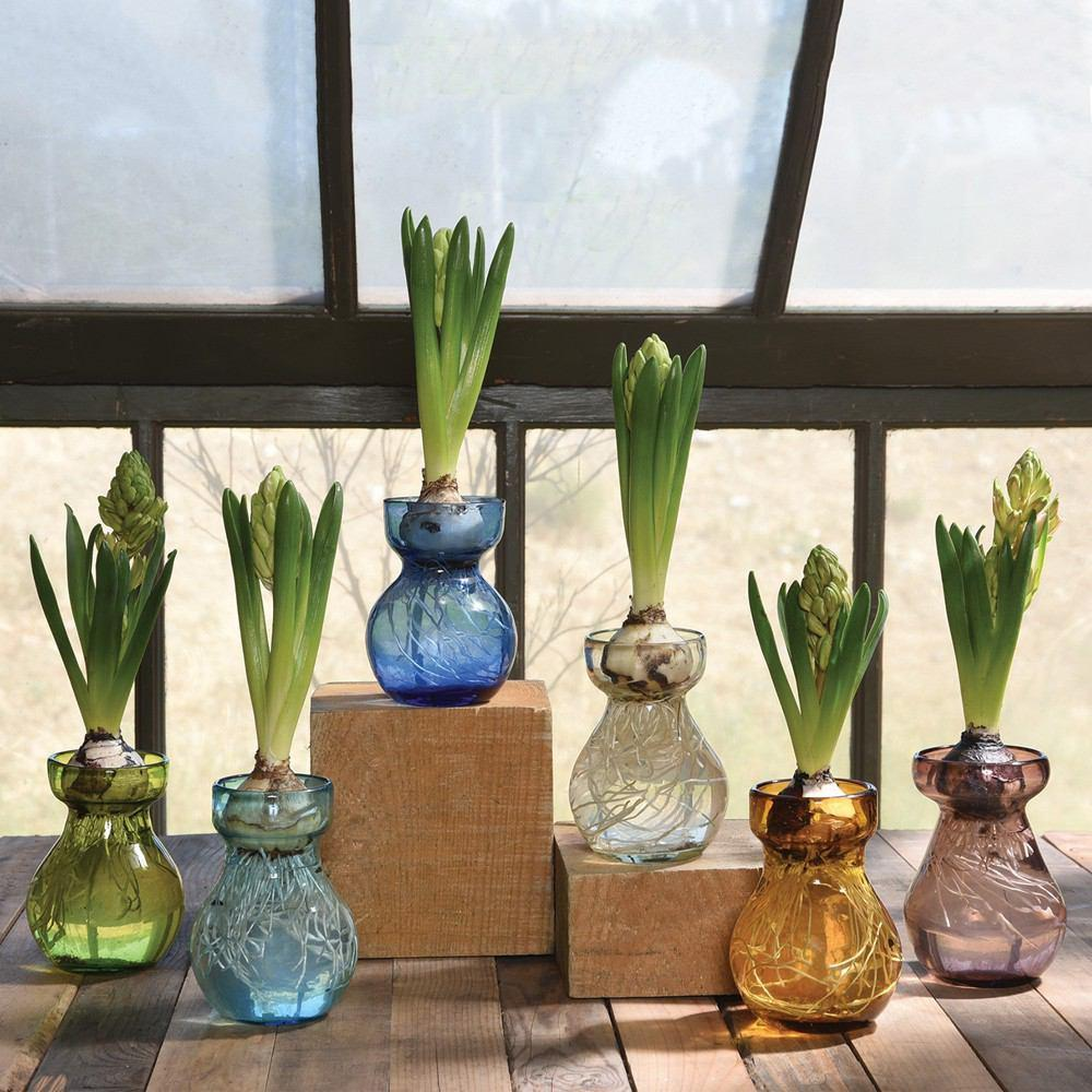 HomArt Bulb Vase - Recycled - Set of 6
