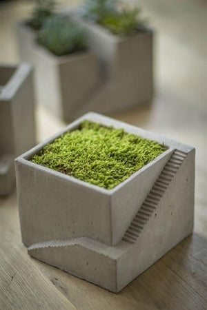 Vagabond Vintage Cement Planter, Architectural Cube I- Set of 2