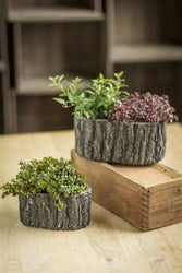 Bark-Like Detail Oval Pots - Set of 2