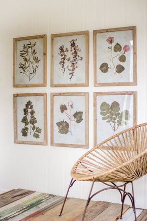 Kalalou Leaf Prints Under Glass - Set Of 6