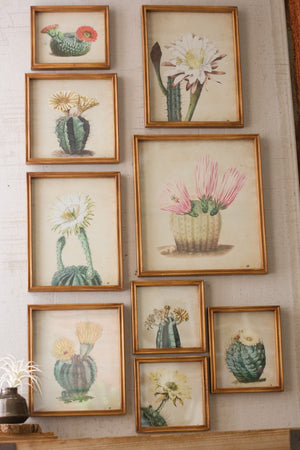 Kalalou Set Of 9 Cactus Flower Prints Under Glass