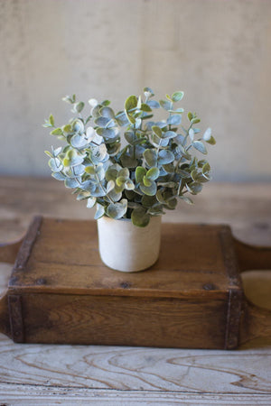 Kalalou Boxwood Sage Plant IN Concrete Pot - Set of 4