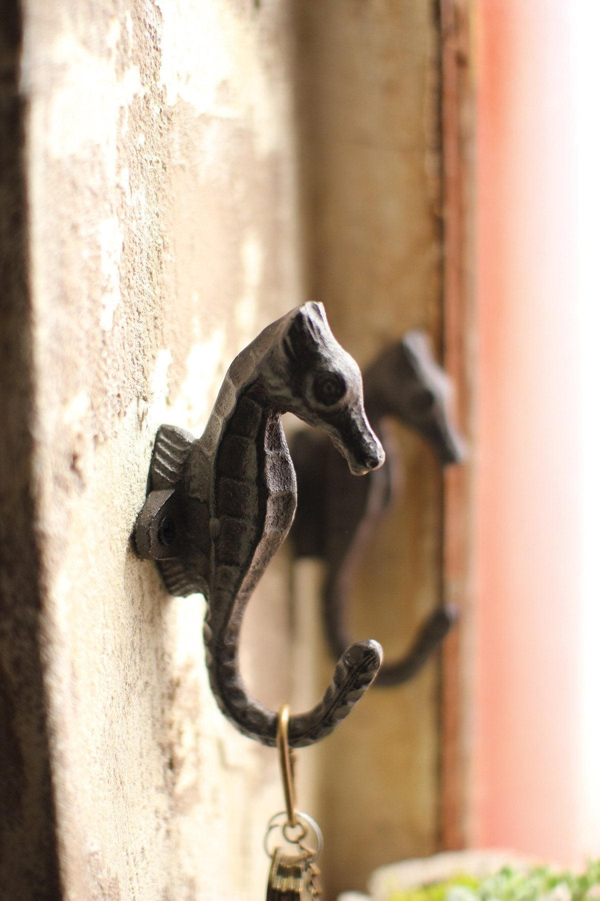 Kalalou Cast Iron Sea Horse Hook - Set Of 8