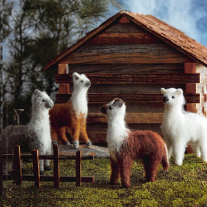 Roost Como Se Llama Ornaments - Set Of 12