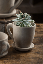Cement Tea Mug - Small - Set of 6