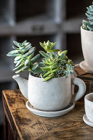 Cement Tea Pot Planter - Set of 3