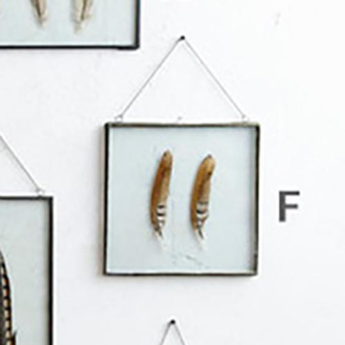 Roost Iron Edged Hanging Frames including Feathers | MapleNest