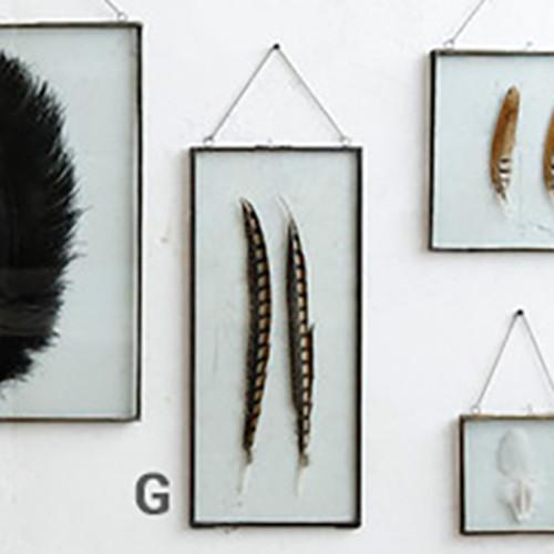 Roost Iron Edged Hanging Frames including Feathers Frames, Roost, - Modish Store