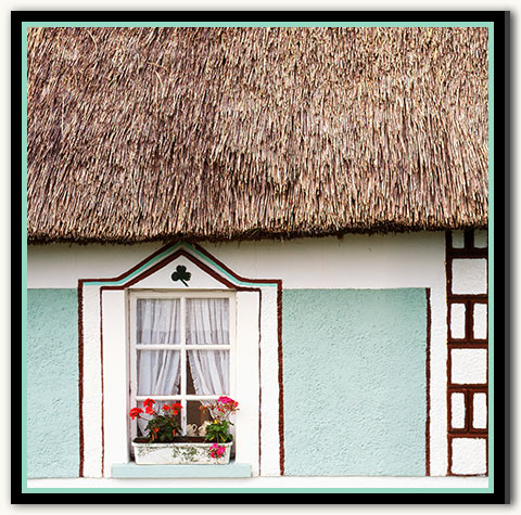 07a-127 Cottage Thatch_03-New Mint