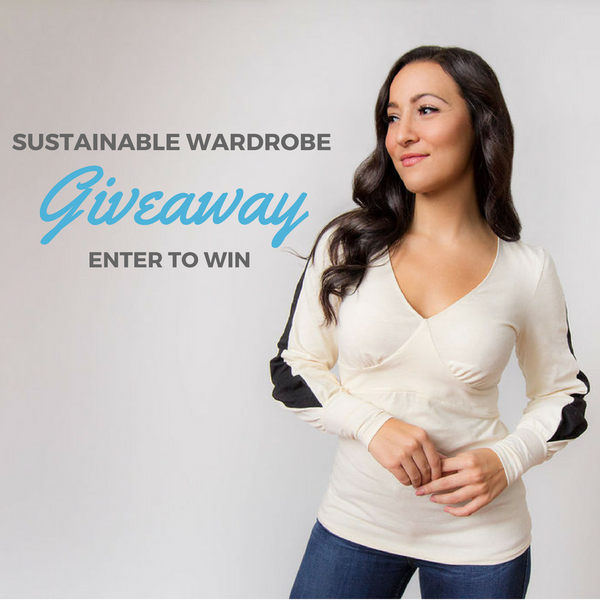 Wallis Evera $500 Gift Card Giveaway