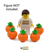 Pumpkins - Pack of 5 Pumpkins