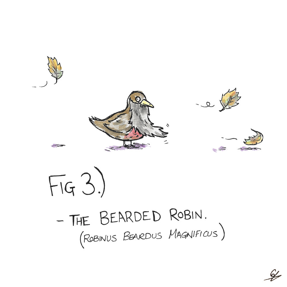The Bearded Robin