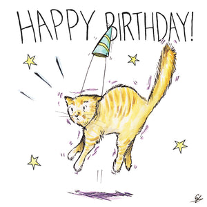 It's a Happy Birthday Cat!