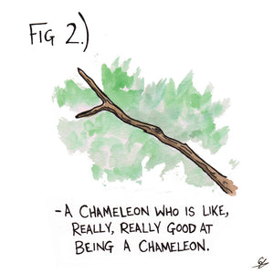 Fig 2.) -A Chameleon who is like, really, really good at being a Chameleon.