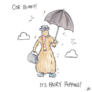 Cor Blimey! It's Hairy Poppins!