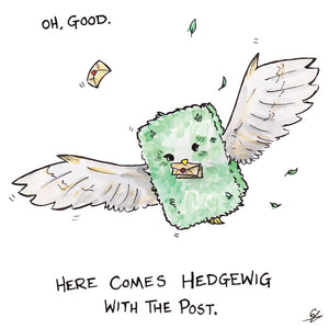 It's a flying hedge with the post. It's Hedgewig
