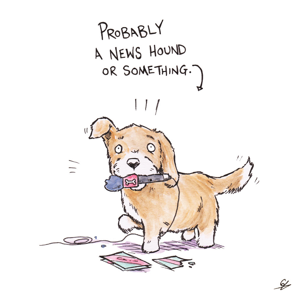 Dog with a microphone in its chops. Probably a News Hounds or something.
